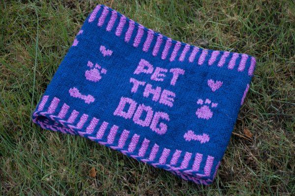 pet the dog